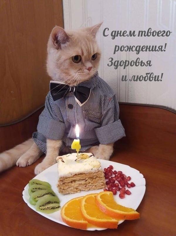 С днем твоего рождения! Здоровья и любви!
