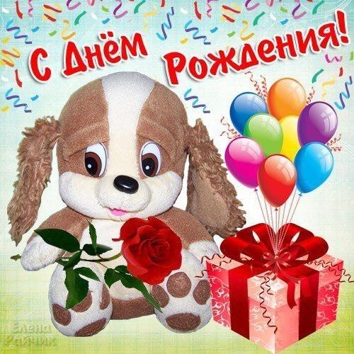 С Днем Рождения! Песик и шарики